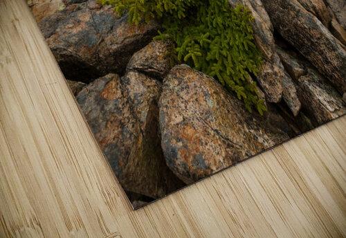 Lone Pine ap 2286 jigsaw puzzle
