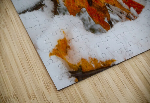 Early Snow ap 1571 jigsaw puzzle