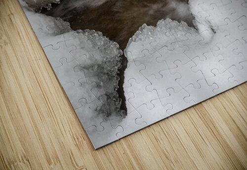 Ice ap 2726 B&W jigsaw puzzle
