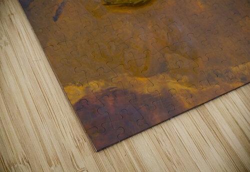 Witch Hazel Leaf ap 1811 jigsaw puzzle