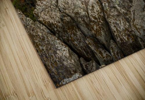 Bear Rocks Preserve apmi 1791 jigsaw puzzle