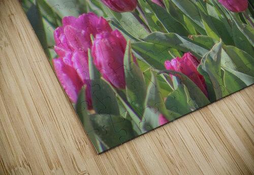 Fantasically Fuschia Tulips jigsaw puzzle