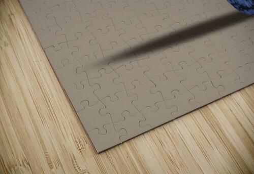 Plankton jigsaw puzzle