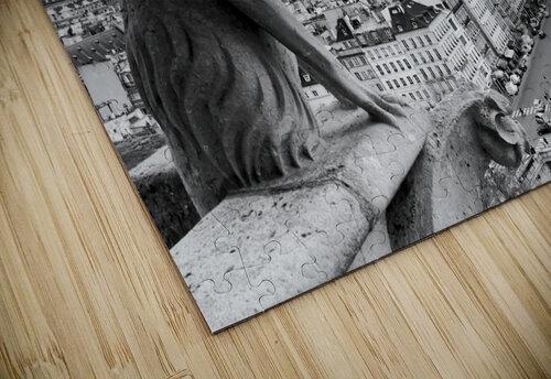 Notre Dame gargoyle puzzle