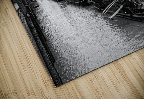 Ile de la Cite flood puzzle