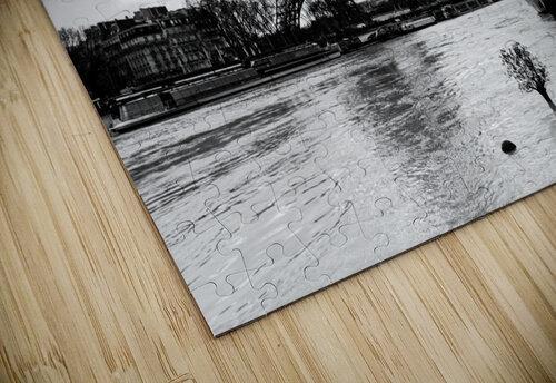Eiffel tower flood puzzle