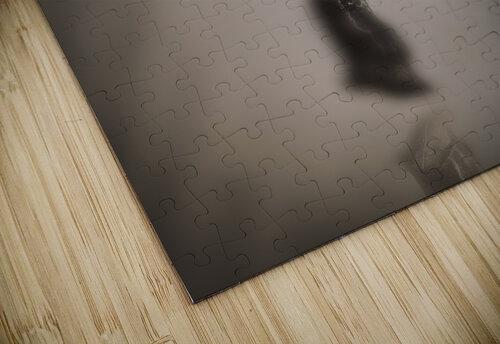 fluitantia desiderari  jigsaw puzzle