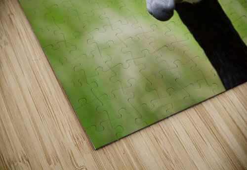 Toothpick Goose jigsaw puzzle