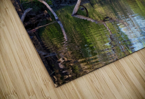 Relaxing Pond View jigsaw puzzle