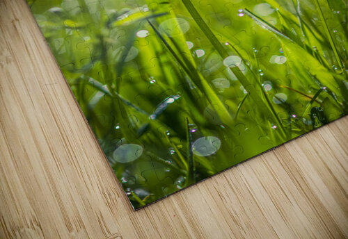 Summer meadow jigsaw puzzle