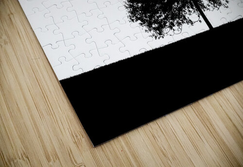 Silhouette of a lonely tree jigsaw puzzle
