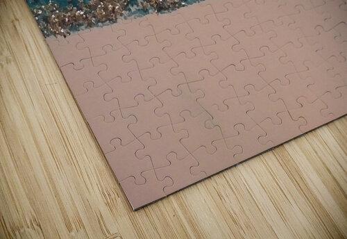 inbound3613842063344723015 jigsaw puzzle