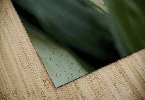 Une larme de hosta  jigsaw puzzle