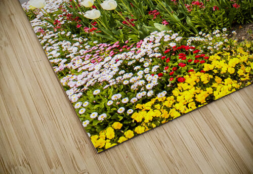 Botanic Garden II jigsaw puzzle