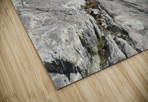 Easy Climb to Grouse Mountain jigsaw puzzle
