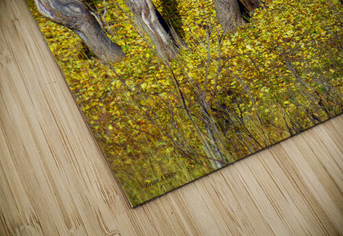 Baby Deer in Old Aspen Trees jigsaw puzzle