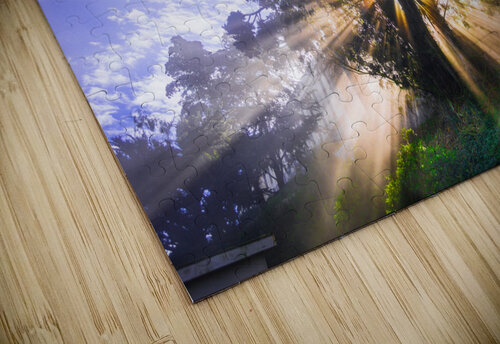 Rays of Light jigsaw puzzle
