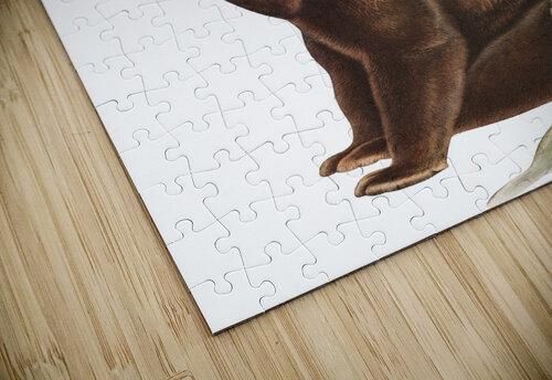 Bear Print jigsaw puzzle