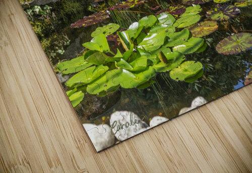 Divin Jardin d   eau   Divine Water Garden puzzle