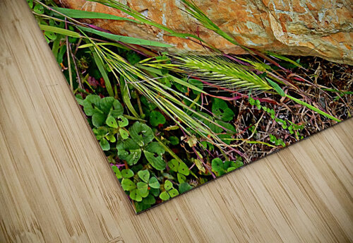 Brown Sandstone Rock With Grass jigsaw puzzle