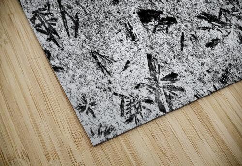 RA005 jigsaw puzzle