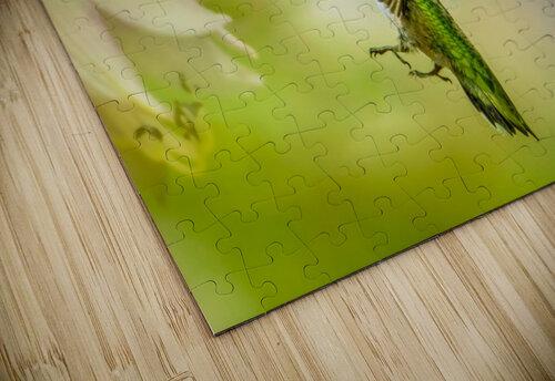 Emerald Hummingbirds jigsaw puzzle