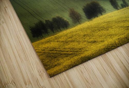 spring fields jigsaw puzzle