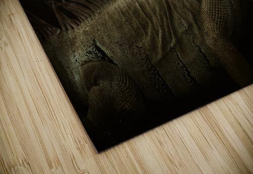 Iguana profile jigsaw puzzle