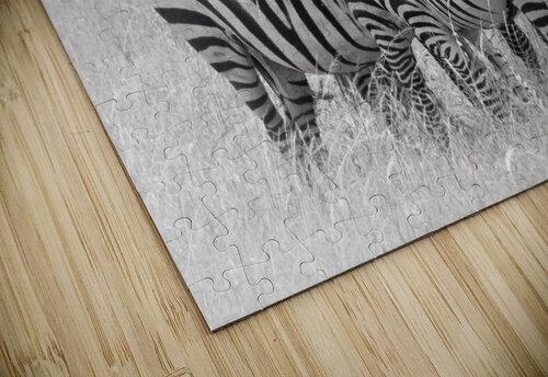 Zebras jigsaw puzzle