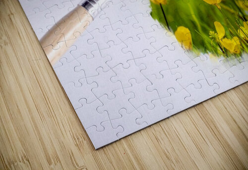 Paintbrush Outdoor Flower Flowers Sunlight jigsaw puzzle