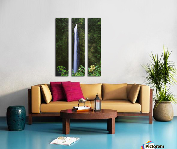 Hawaii, Big Island, Akaka Falls, Tropical Flowers Blooming In Foreground. Split Canvas print