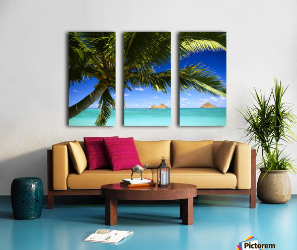 Hawaii, Oahu, Lanikai, Palm Tree Foreground, With Mokulua Islands Background, Sailboat In Turquoise Waters. Split Canvas print