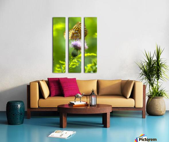 Thistle Nectar Split Canvas print