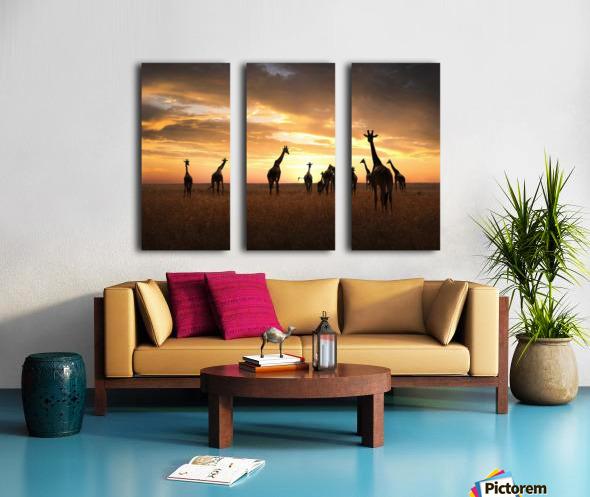 Family Split Canvas print