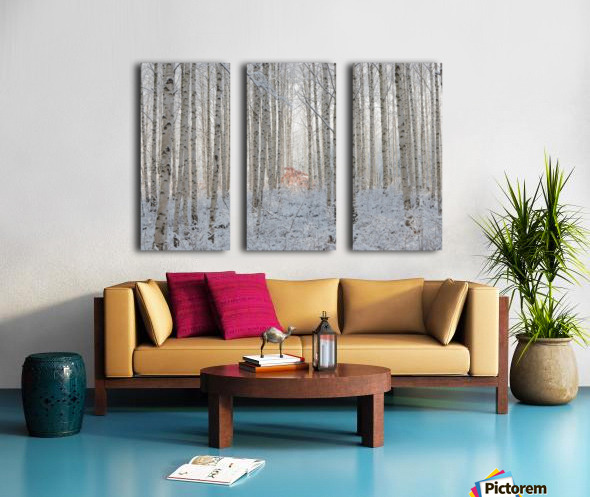 white Split Canvas print
