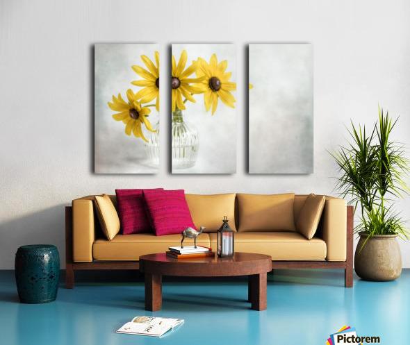 Rudbeckia Split Canvas print