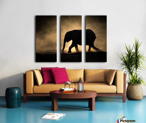 SILHOUETTE Split Canvas print