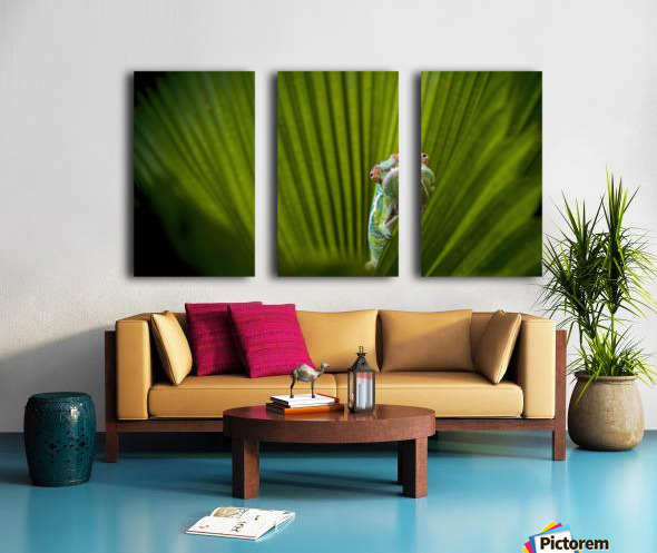 What Is That Split Canvas print