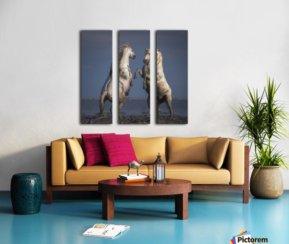 Confrontation Split Canvas print