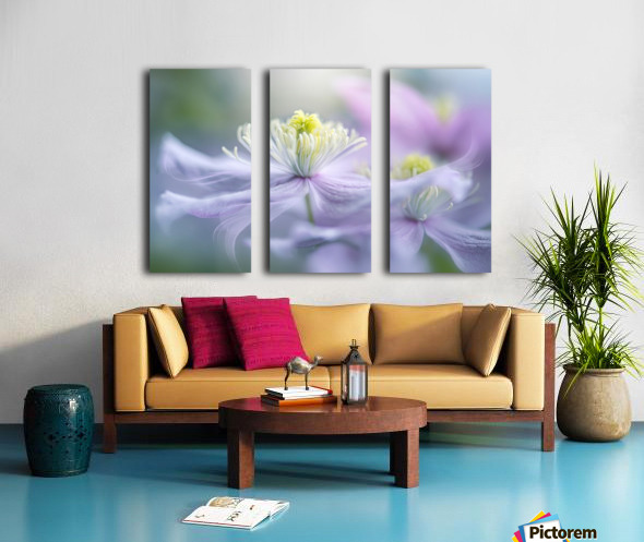 Sway Split Canvas print