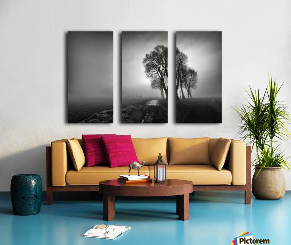 Fog Split Canvas print