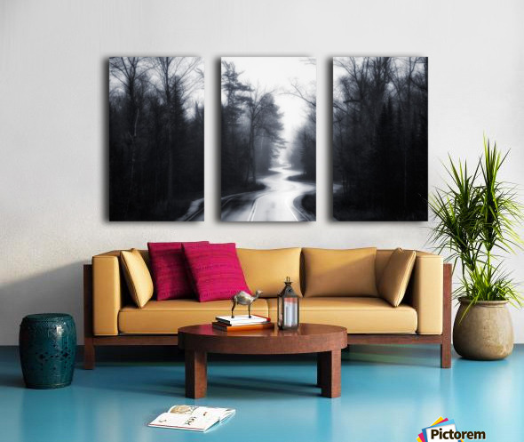 Slalom Split Canvas print