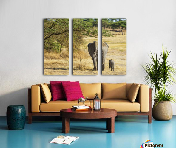 An African Elephant with it's young; Tanzania Split Canvas print