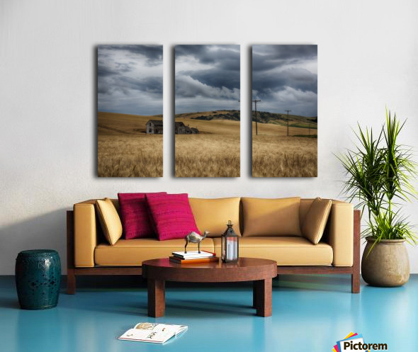 Old, rustic wooden house in the middle of a golden field under a stormy sky; Palouse, Washington, United States of America Split Canvas print
