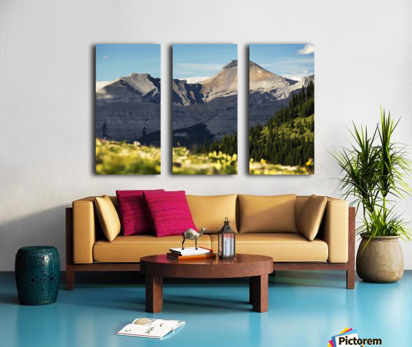 Mountain range with wildflowers on hillside in the foreground and blue sky; Bragg Creek, Alberta, Canada Split Canvas print