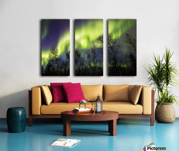 Aurora borealis over silhouetted trees; Alaska, United States of America Split Canvas print