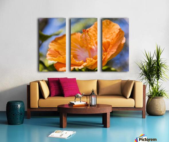 Close-up of orange hibiscus flower; Maui, Hawaii, United States of America Split Canvas print