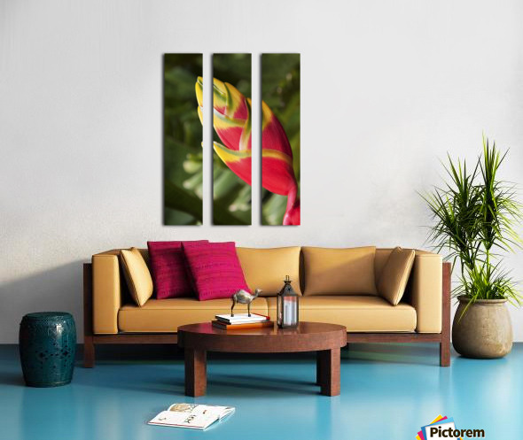 Close-up of lobster-claw heliconia flower; Maui, Hawaii, United States of America Split Canvas print