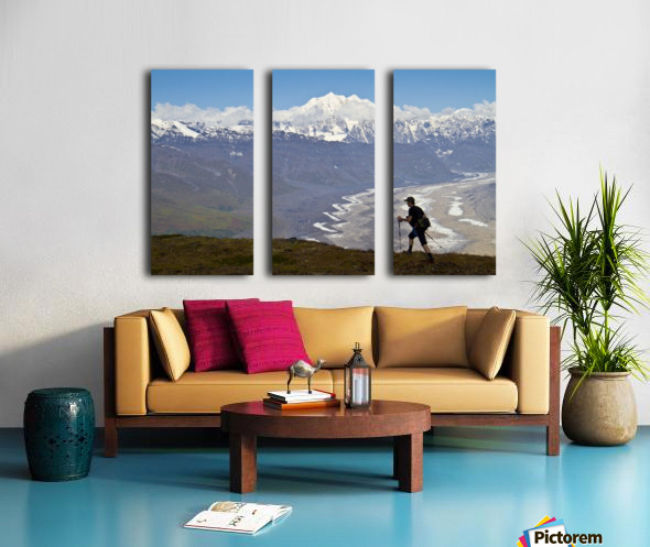 Silhouette Of A Man Hiking In The Tokosha Mountains Above The Tokositna Glacier With Mt. Hunter And The Alaska Range In The Background, Denali National Park & Preserve, Interior Alaska, Summer Split Canvas print