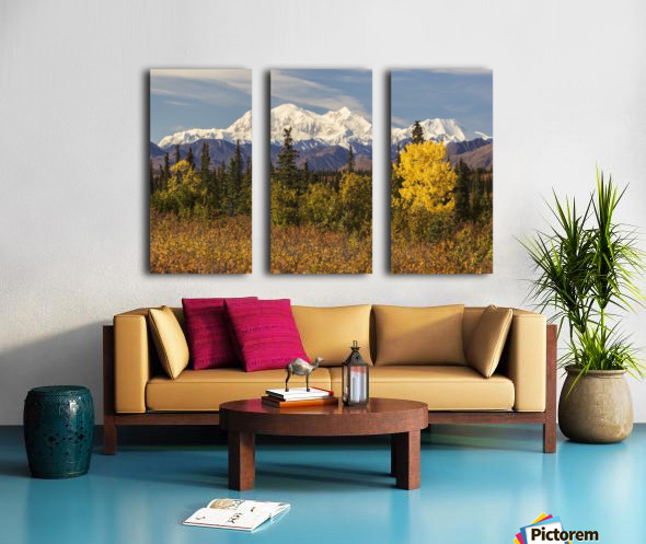 Denali, viewed from south of Cantwell, from the Parks Highway in Interior Alaska; Alaska, United States of America Split Canvas print